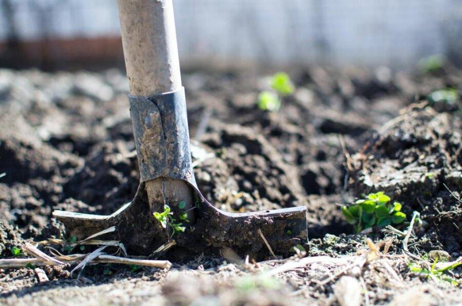 Sonderregel soll Entsorgung arsenbelasteter Erde erleichtern