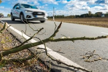 Der Sturm brach Äste an der Staatsstraße 221 zwischen Marienberg und Großrückerswalde.