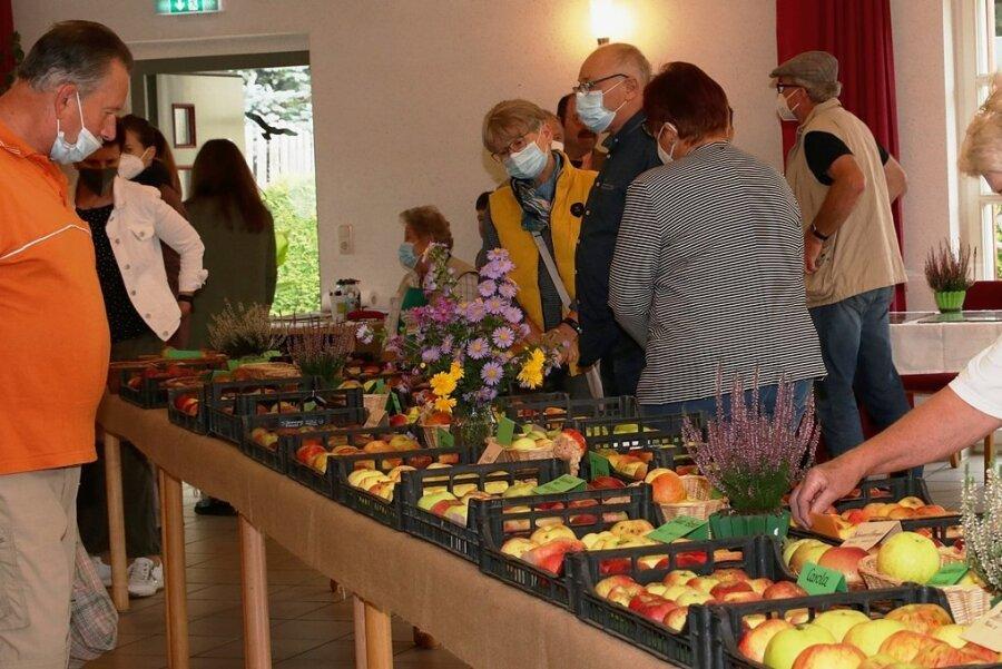 60 Apfelsorten hatten die Veranstalter zusammengetragen, darunter befanden sich historische und neue Sorten.