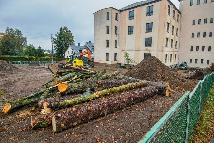 Die Holzstämme liegen noch auf dem Gelände neben dem ehemaligen Berufsbildungszentrum. Die Planer wollten die Bäume eigentlich in den neuen Spielplatz integrieren.