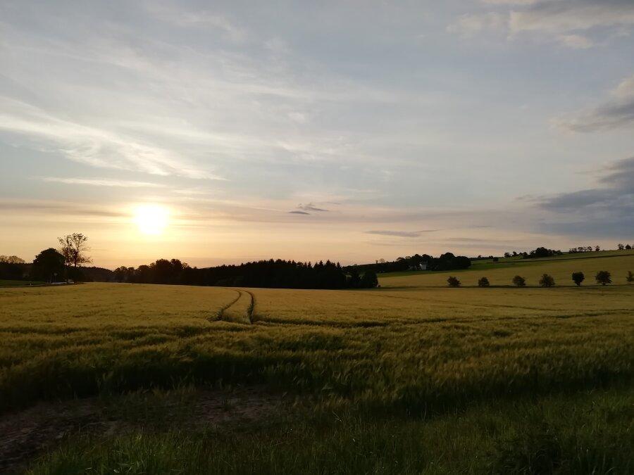 Sonnenaufgang über Marienberg