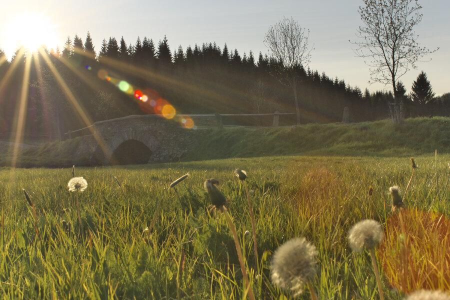 Abendstimmung wie im Märchen, das ist der Frühling im Schwarzwassertal.